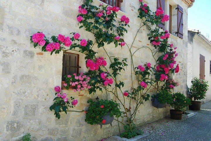 fachada de casa florida