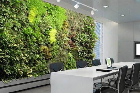 fotos de paredes decoradas com jardins verticais