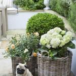 Fotos-de-decoração-de-jardim (16)