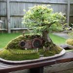 Fotos-de-decoração-de-jardim (17)