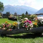 Fotos-de-decoração-de-jardim (23)