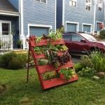 Fotos-de-decoração-de-jardim (9)