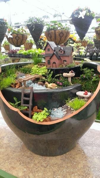 Jardins de fadas (37)