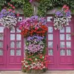 decoração-de-jardim-externo (23)