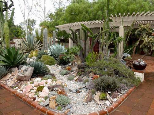 Jardim com suculentas for Ideas para decorar un jardin economico