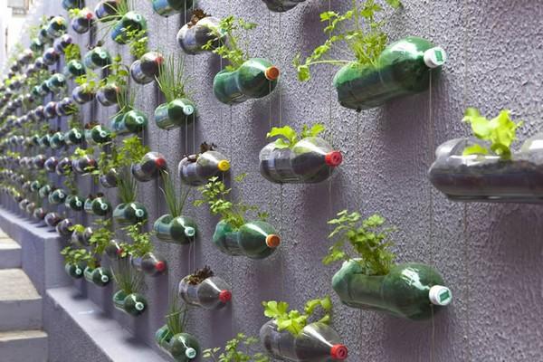 jardinagem-decoração-garrafas-pet
