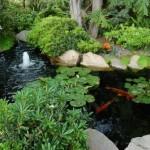 Lagos ornamentais para jardins
